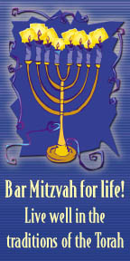 Preview of Bar Mitzvah for Life!
